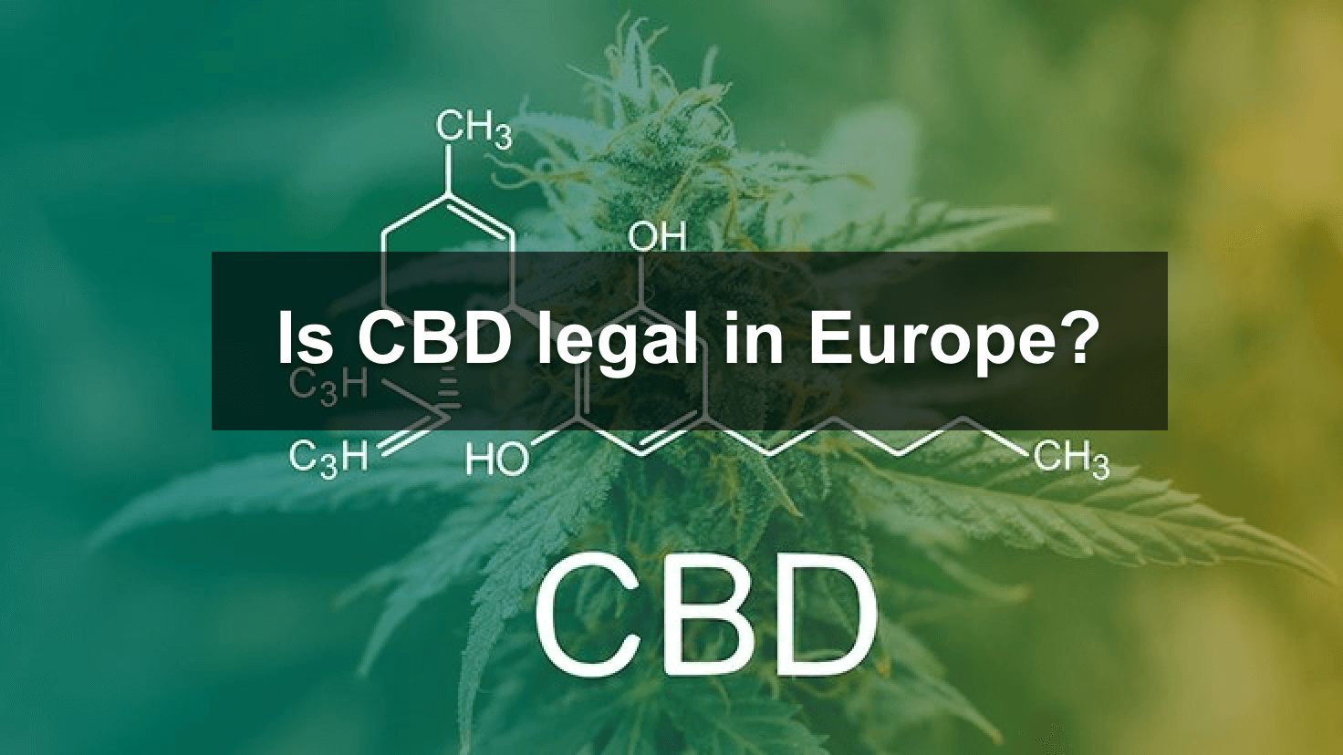 CBD in Europe, is CBD legal? is it legal in your country? A quick guide to CBD legal status